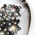 Bijou en perle de culture pour femme et homme